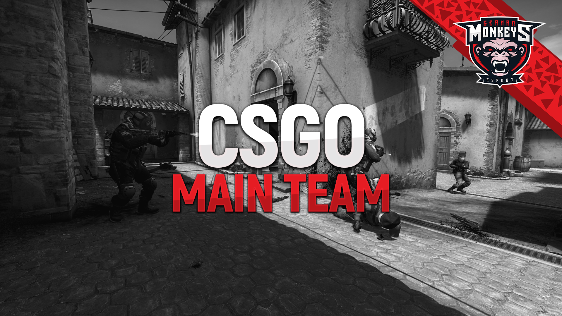 counter-strike-main-team